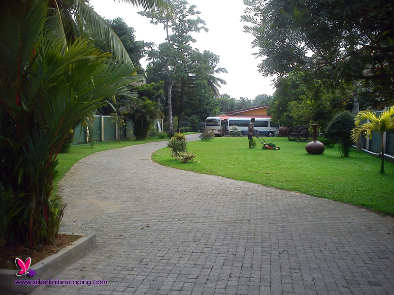 Srilankalandscaping landscaping gardening for Architectural design company in sri lanka
